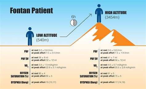 8 Negative Effects Of Exercise by Impact Of Term High Altitude Exposure On Exercise
