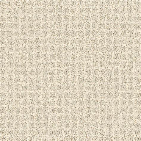 lifeproof carpet sle persevere color loop 8