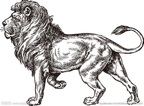 imagenes de leones vintage 大狮子图片简笔画 最简单的狮子头怎么画 画豹子简笔画图片大全 幼儿简笔画狮子带颜色 大狮子绘画图片