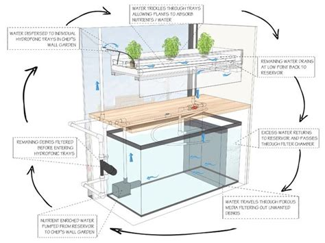 chefs wall garden aquaponics hydroponics system