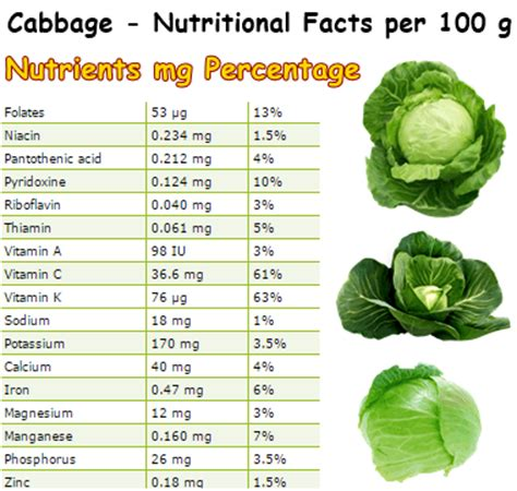 Cabbage Medicinal And Cosmetic Value by Cabbage Helicobacter Pylori Natureword