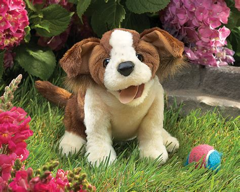 lucky puppy lucky puppet by folkmanis puppets