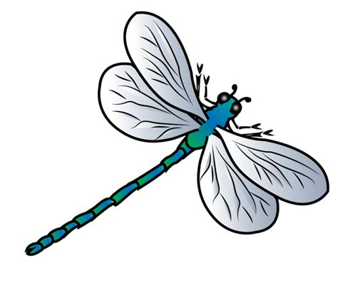 dragonfly clipart dragonfly vector by jscollon on deviantart