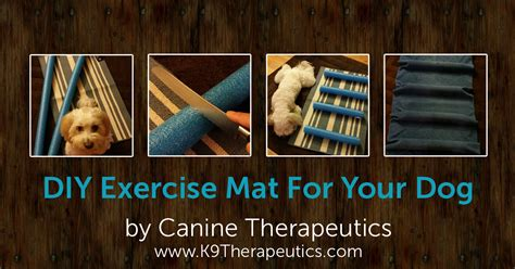 Diy Exercise Mat by Diy Exercise Mat For Your By Canine