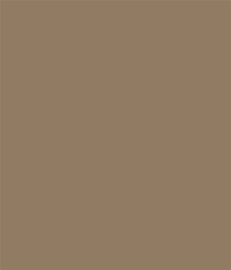 buy asian paints ace exterior emulsion dull birch at low price in india snapdeal
