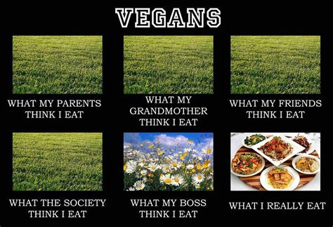 vegan problems what people think i eat