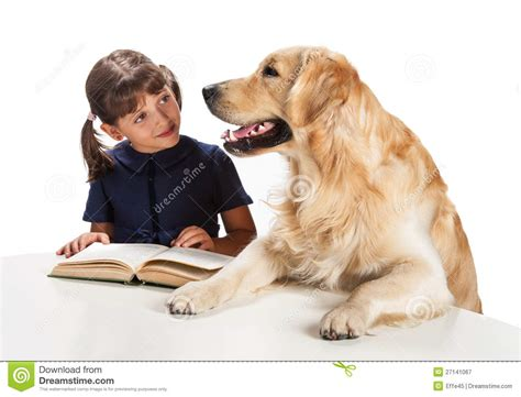 reading to dogs reading to royalty free stock photography image 27141067