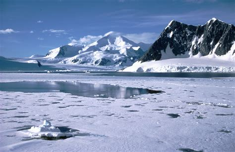 why is antarctic sea ice growing physorg news and why antarctic sea ice cover has increased under the