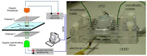photodiode organic electronics free text integration of organic light emitting diodes and organic