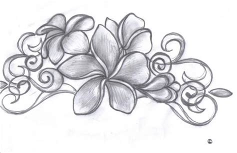 frangipani tattoos designs free strategically placed tattoos this is what i d like for
