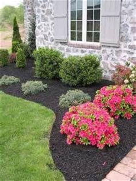 how to make your backyard look good 25 best cheap landscaping ideas on pinterest easy