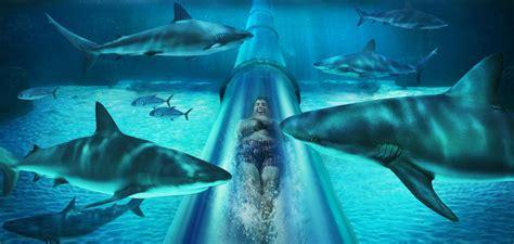 Carnival Cruise Suites Floor Plan water slides dolphin cay bahamas atlantis paradise island