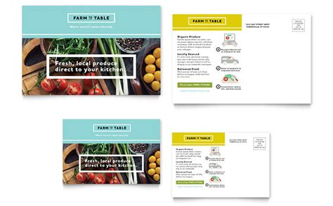 template indesign postcard organic food postcard template design
