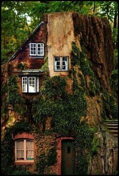 real treehouse 1000 images about tree houses on pinterest tree houses