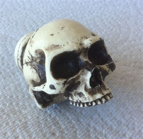 Skull Door Knob by Made Usa Skull Custom Door Drawer Cabinet Wardrobe Pull