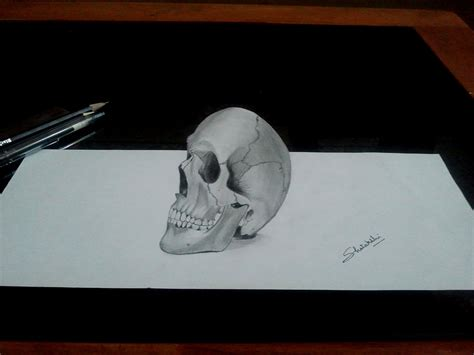 Three D Sketches by 3d Human Skull Pencil Drawing By Pencilartlove On Deviantart
