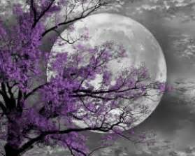 purple wall foter