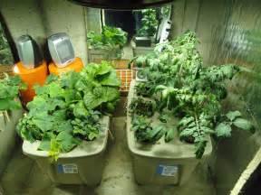 best indoor garden system indoor hydroponic systems car interior design