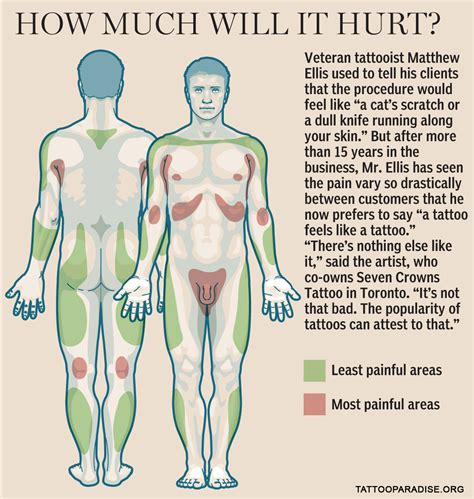 tattoo pain chart on arm check out the most painful places to get a tattoo and the
