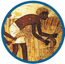 storia alimentazione salute la cultura cibo