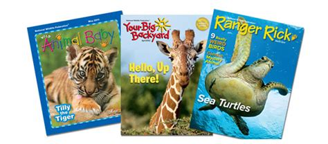 my big backyard magazine subscription your big backyard magazine subscription my big backyard