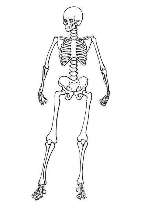 skeleton template cut out big halloween pinterest
