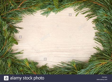top traditional pine tree images traditional pine tree border decoration on a