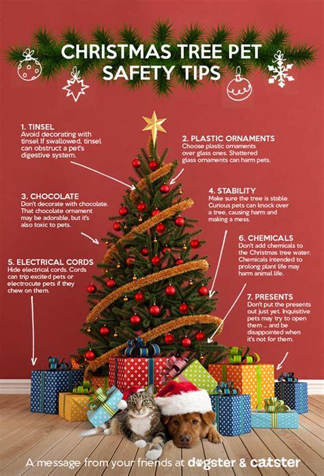 7 tips keep pets christmas tree safe petjoynaturals com
