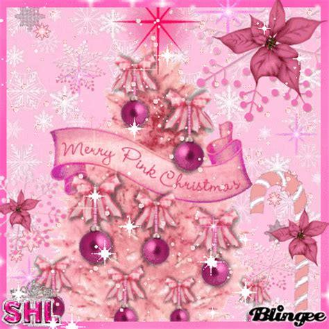 imagenes rosas de navidad rosa navidad cяίکta fotograf 237 a 102805232