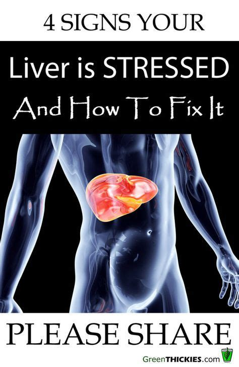Symptoms Of Your Liver Detoxing by 4 Signs Your Liver Is Stressed How To Fix It Liver
