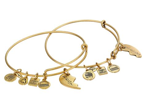 alex and ani bracelet alex and ani best friends set of 2 charm bangle at zappos