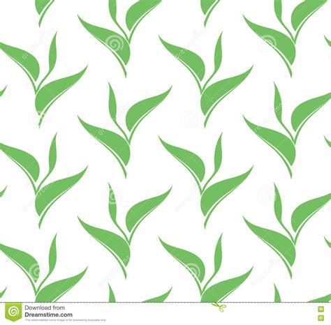 tea leaf pattern vector leaf green tea seamless pattern stock vector image