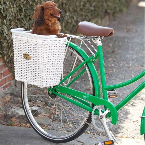 bike baskets for dogs bicycle basket doxie lovin