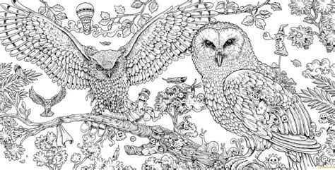 hard coloring pages of owls animorphia owls hard coloring page free coloring pages