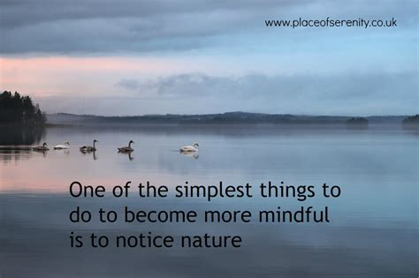 mindful mountains and other peaceful places books simple mindfulness notice nature place of serenity