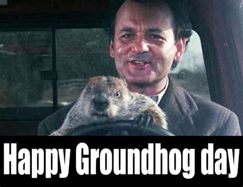 groundhog day like happy groundhog day by tandp on deviantart