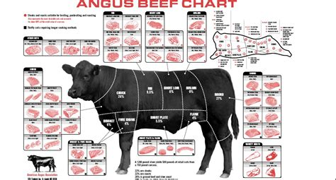 beef butcher diagram lausanne is there a decent butcher in town