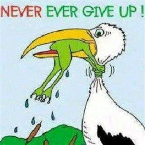 never give up motivational quotes motivational quotes