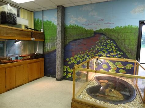 Reptile Rooms by Grounds Driftwood Education Center