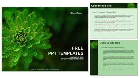 plants themes for powerpoint 2007 free download water plant nature powerpoint templates
