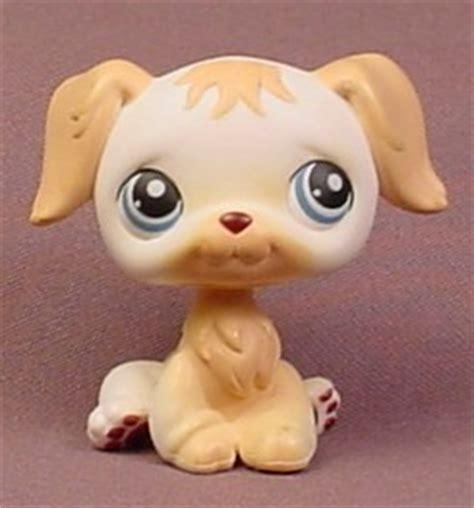 lps golden retriever littlest pet shop 139 chocolate brown dachshund puppy with green breeds picture