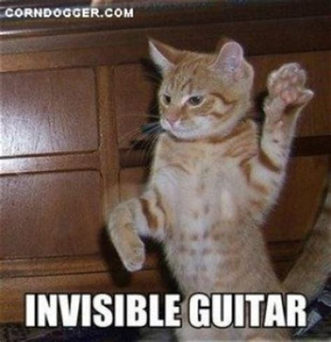 Invisible Cat Meme - invisible lolcats memes