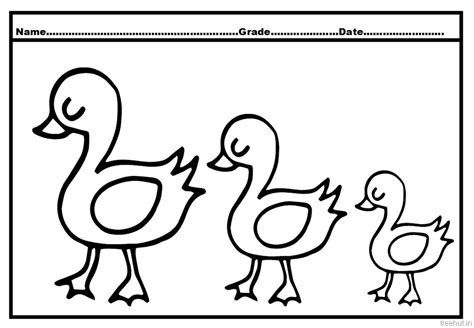 duck in the rain colouring page kindergarten duck enjoying the rain coloring pages of duck and ducklings