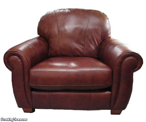 sofa funny funny sofa pictures freaking news
