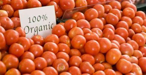 alimenti ricchi di licopene tomates org 226 nicos s 227 o mais ricos em licopeno e vitamina c