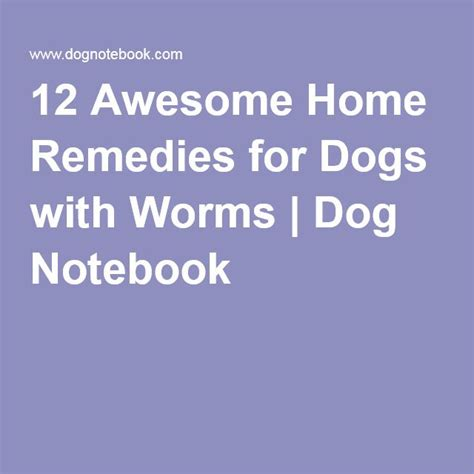 home remedies for puppy worms 1000 images about dogs puppies on doggies for dogs and beds