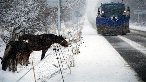 cadenas nieve baqueira la nieve obliga a cortar la bonaigua por riesgo de aludes