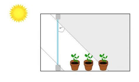 plant growth light intensity 18 plants grown in containers nc state extension