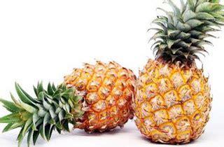Segi Empat Serat Nanas 04 aneka tanaman aneka tanaman buah nanas ananas comosus