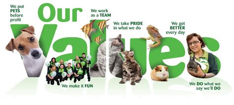 pets at home our vision and values our vision and values